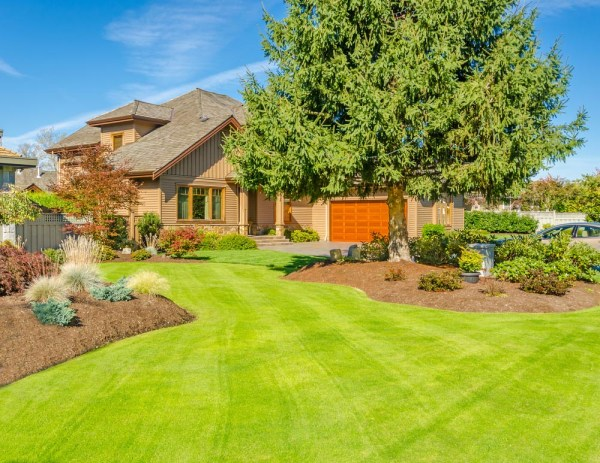 appealing front yard landscaping