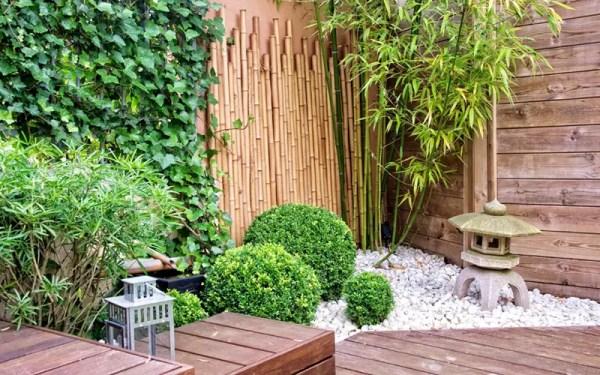 bamboo landscaping ideas - garden
