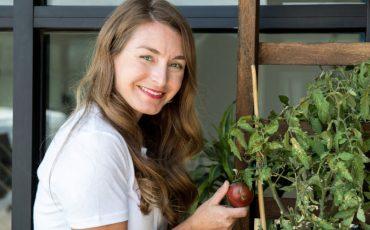 Gardener and Tomato Plant