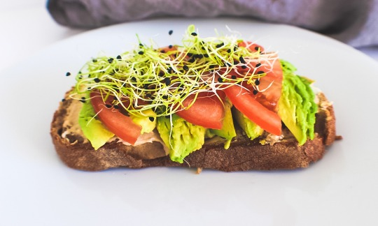 No Cook Tomato Avocado and Sprout Sandwich