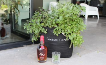bourbon in front of gardenuity grow bag