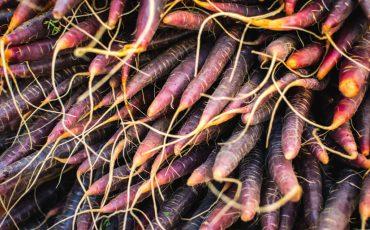 fall root veggies