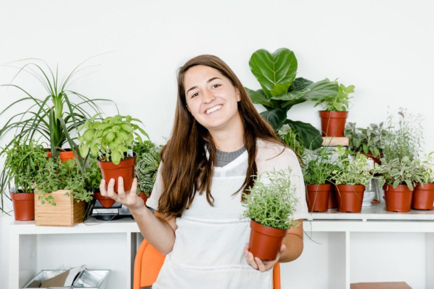 gardening demystified with our grow pros
