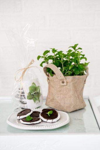 valentine's gift - mint gift set