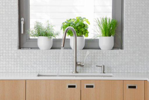 watering tips to keep your indoor herbs alive