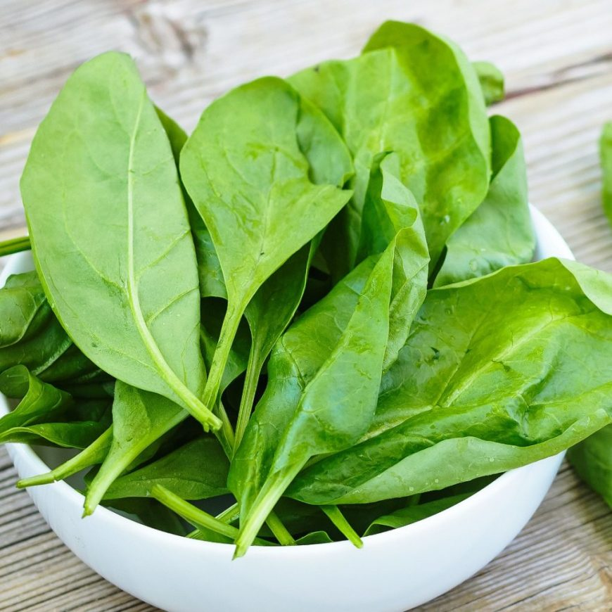 bowl of freshly harvested spinach leaves