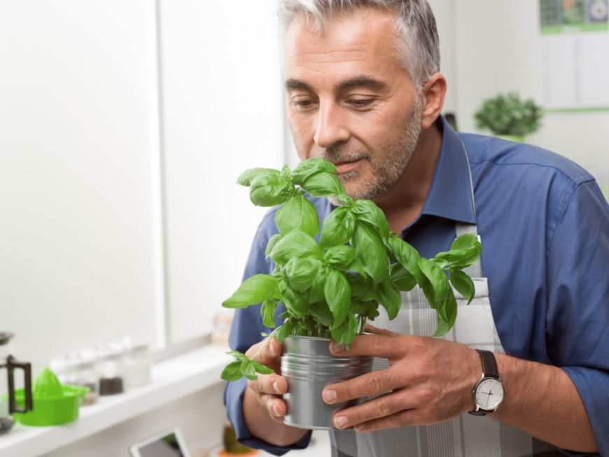 Man Smelling Basil