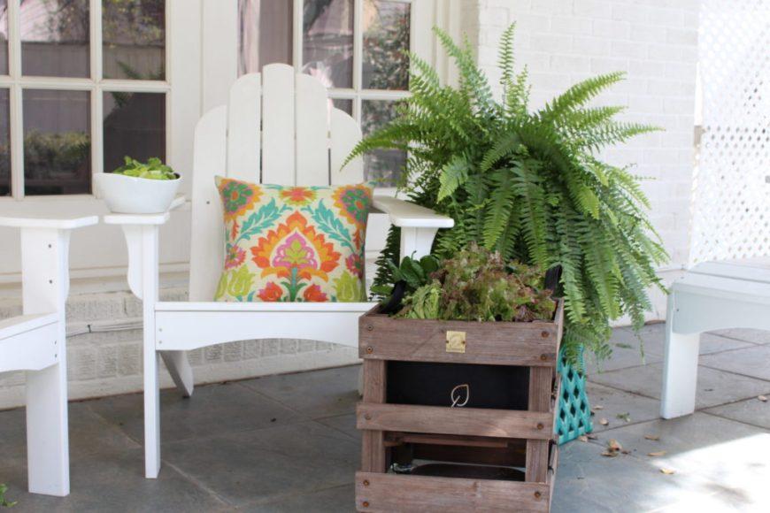 patio decor container garden