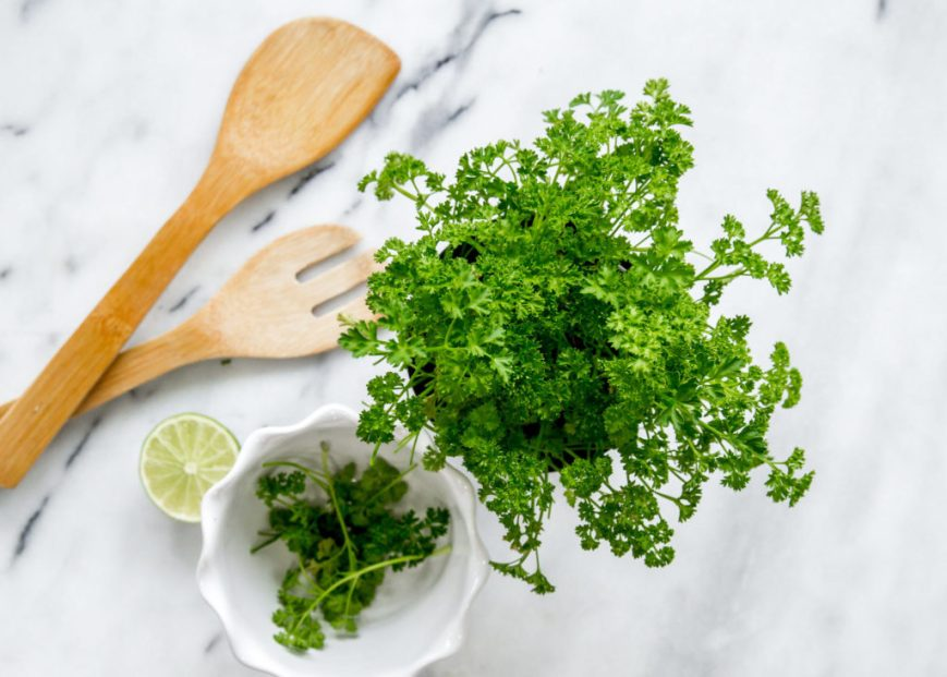 Cilantro to Enhance Meal Kit