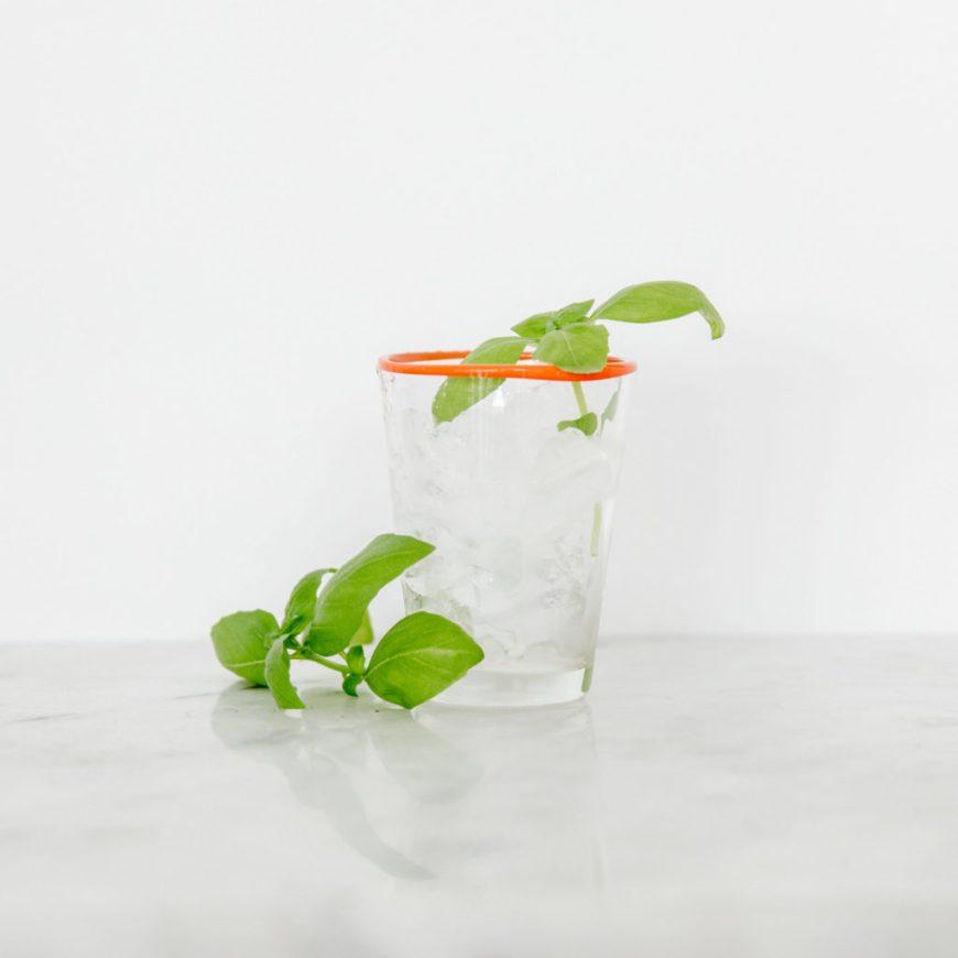 Basil Cocktail Recipe