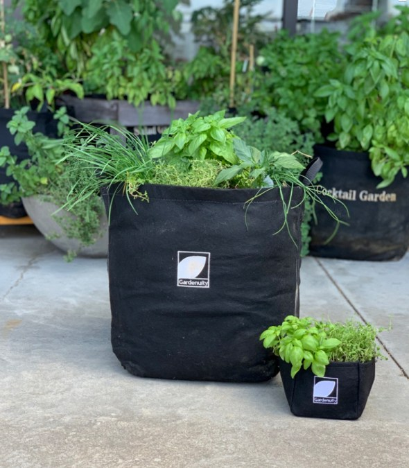 Late Season Planting in Containers