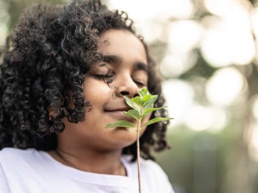 kid herbal aromatherapy
