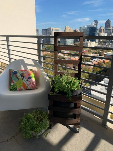 Urban Garden on Balcony