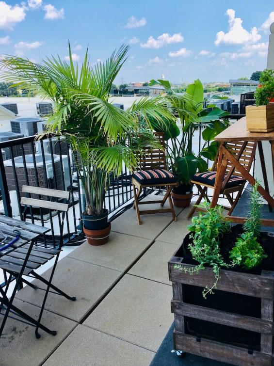 Urban Vegetable Garden on Balcony