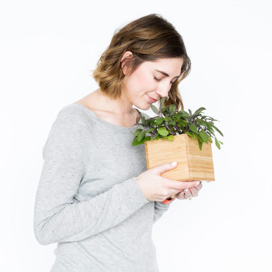 sage herb box