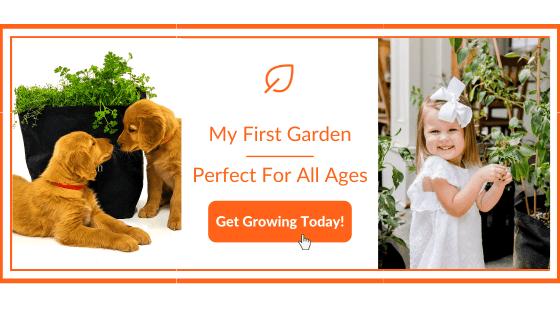 My First Garden Banner