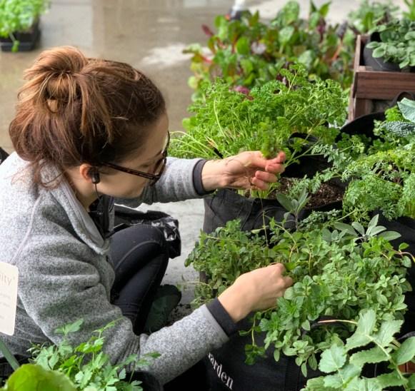 Beka Rich Gardenuity Grow Pro