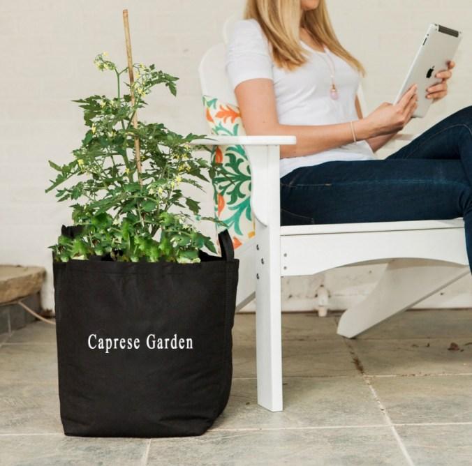Caprese Garden Kit