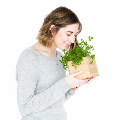 Fresh Parsley Gardenuity Herb Box