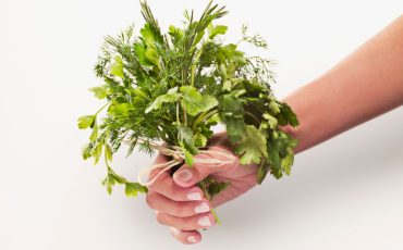 Herb Bouquet for Wedding
