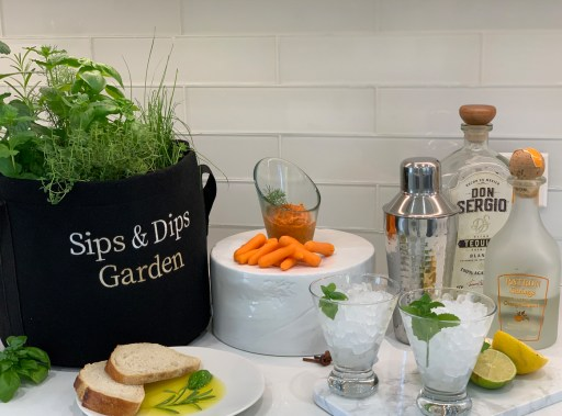 Sips & Dips Garden at Event