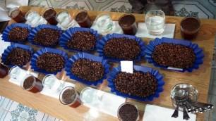 K'HO coffee farm: Slepé hodnotenie upražených kávových vzoriek