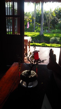 Bến Tre, delta Mekongu, homestay