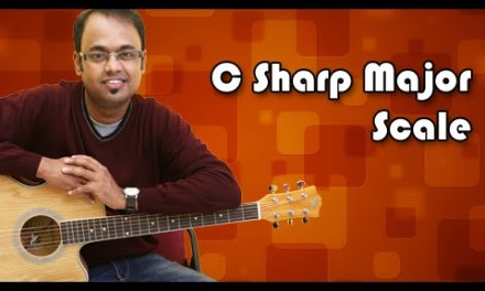 How To Play – C Sharp Major Scale / D Flat – Guitar Lesson For Beginners