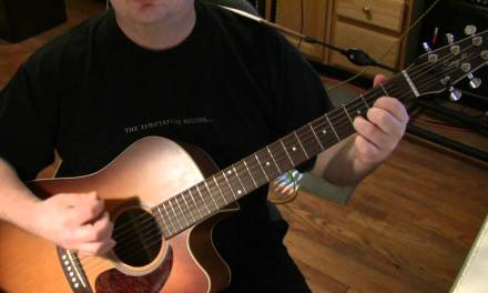 Wild Horses Acoustic Guitar Lesson