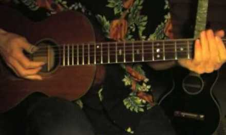 Blues in the key of E Lesson – Fingerpicking – Part 1 – Hey, Hey Hey Babe – Big Bill Broonzy Style