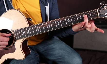 Mungo Jerry – In The Summertime – How to Play on Guitar – Acoustic Blues Guitar Lesson