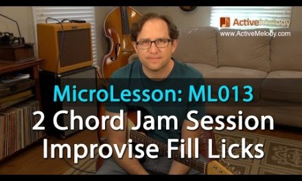 Guitar Lesson: Learn How To Improvise Fill Licks Using Just 2 Chords – MicroLesson ML013