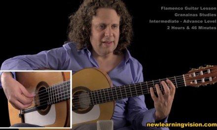 Demo of Flamenco Guitar Lesson. Granainas Studies by Adam del Monte