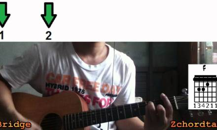 How To Play Stay – Rihanna Guitar Chords Tutorial/Lesson