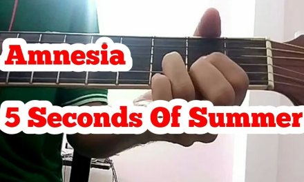 Amnesia – 5 seconds of summer 5sos Easy acoustic Guitar lesson tutorial Basic Chords no capo