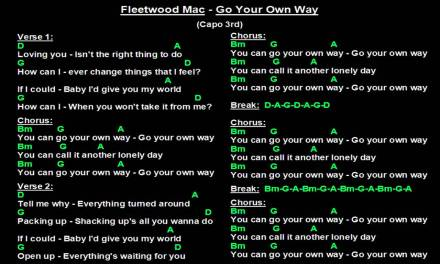Fleetwood Mac – Go Your Own Way (Backing Track with guitar chords and lyrics)