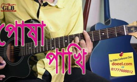 Hridoyo pinjirar posha pakhi re amare kandaiya paw ki sukh Guitar Lessons