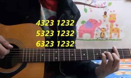 Dil Diyan Gallan   Atif Aslam   Hindi Guitar Cover Lesson Chords Easy  Tiger Zinda Hai unplugged