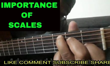 IMPORTANCE OF SCALES Guitar Lesson in Hindi || By Sudarshan Khati