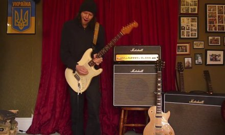 Flexi Blues Deluxe by F A Guitar Cabs