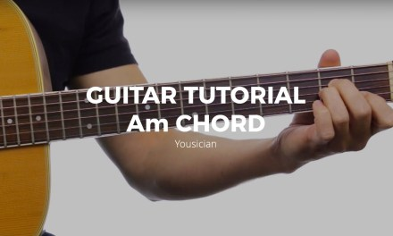 Guitar Tutorial – Am Chord