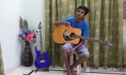 strings of guitar  lesson in hindi