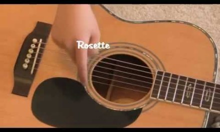 The Different Parts of the Acoustic Guitar