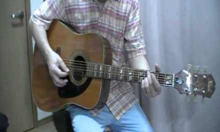 Pearl Acoustic Guitar Repair