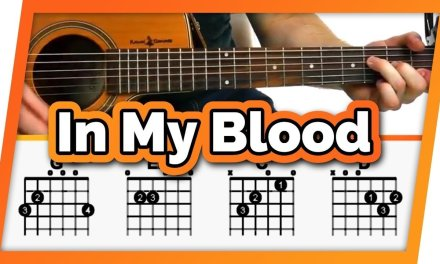 In My Blood Guitar Tutorial (Shawn Mendes) // Easy Chords