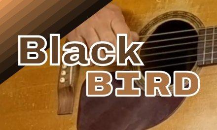 How To Play Blackbird On Guitar Fingerstyle | Blackbird Guitar Tabs PDF