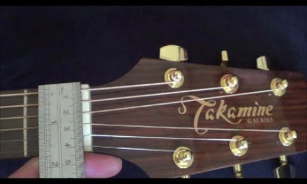 Takamine G Series G340S Acoustic Guitar with D'Addario EXP16 String Review and Demo