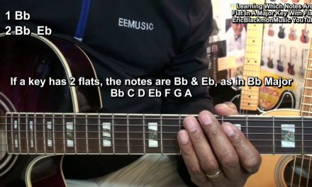 What Are Sharps Or Flats On Guitar? – How To Tell The Difference Guitar Lesson