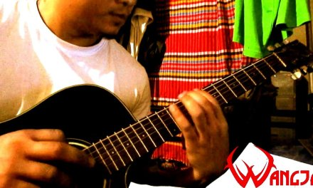 How to Play Alternate Picking   Scale Runs Exercise Guitar Lesson   Wangja Chakma