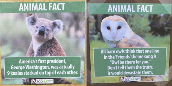Off Topic Friday: Jokester posts funny fake facts at L.A. Zoo